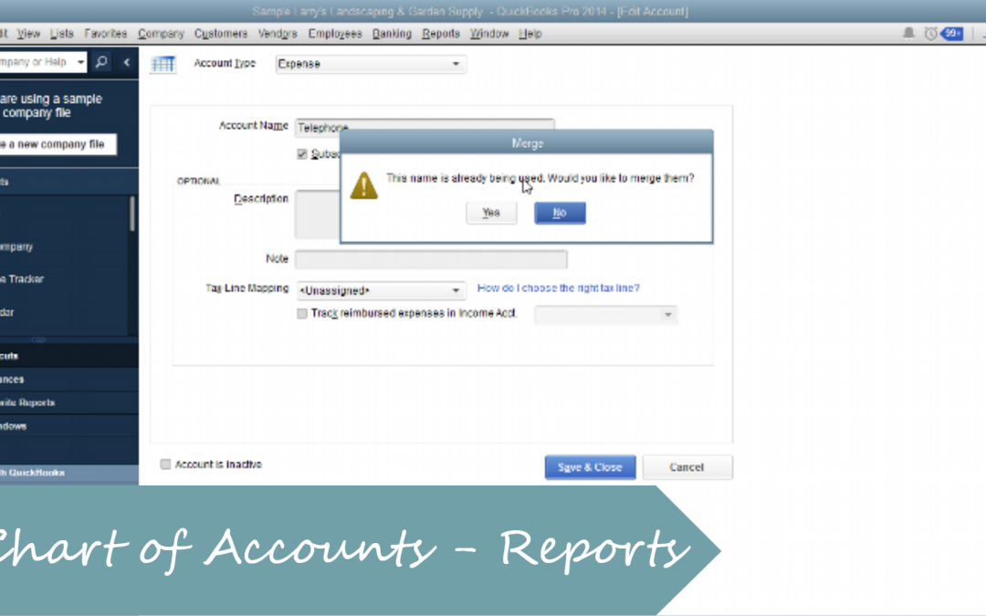 Customize Your Chart of Accounts for Profit & Loss