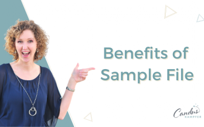 How to use a Sample File in QuickBooks
